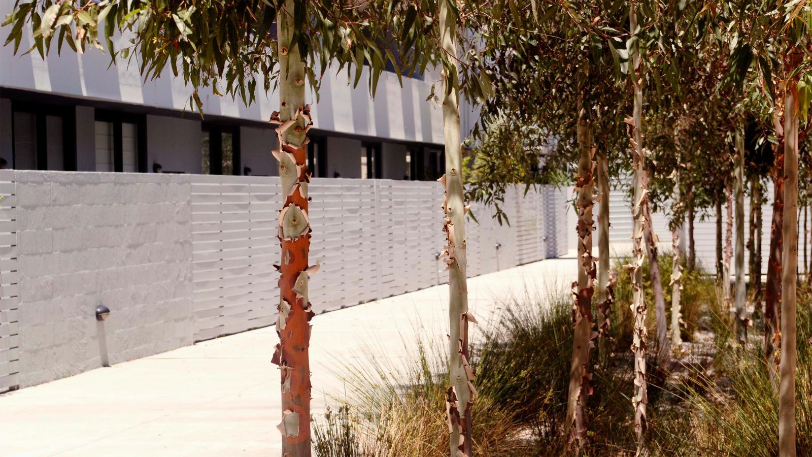 Airia Apartments Photo 3