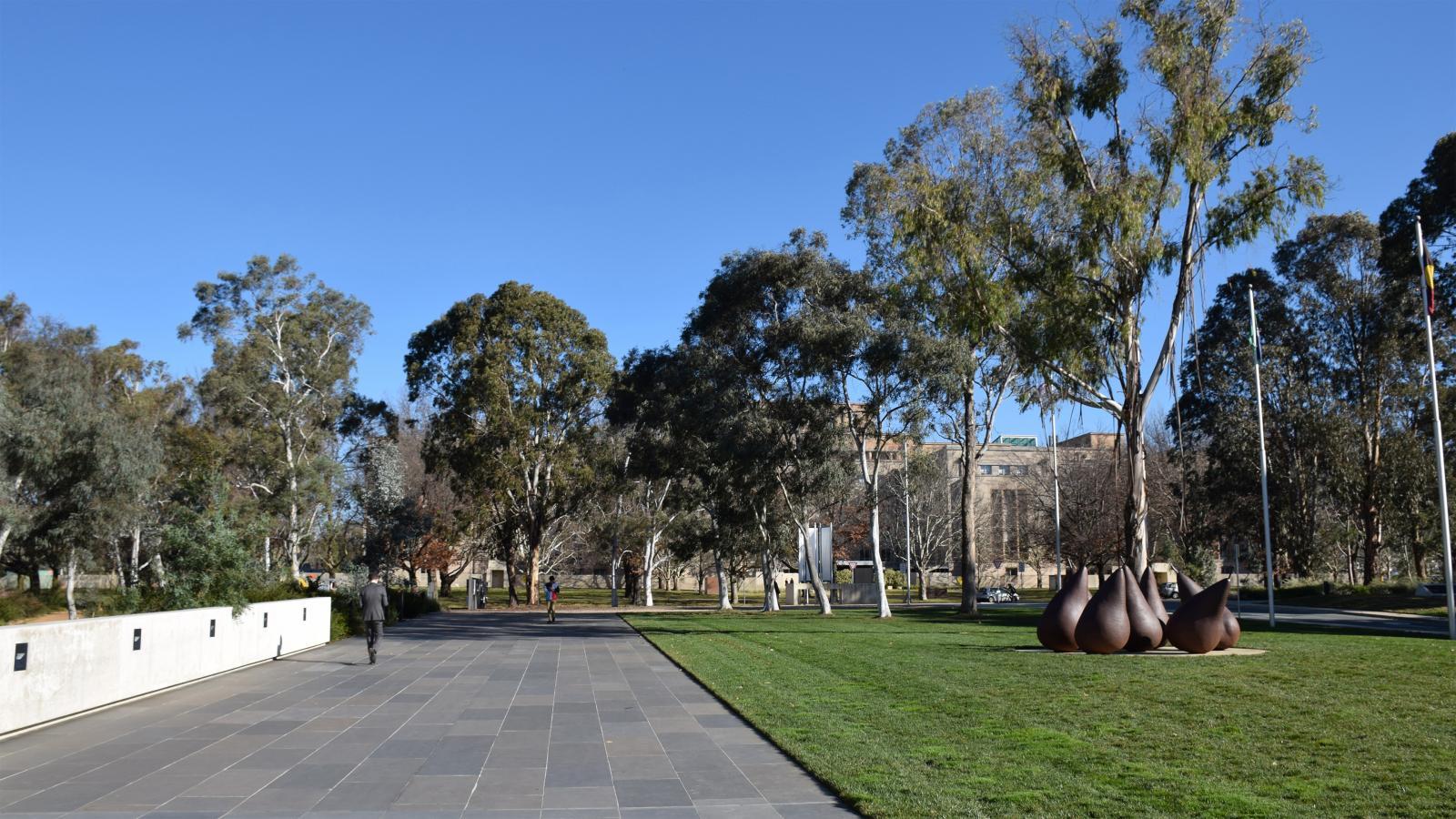 NGA Australian Garden Photo 13