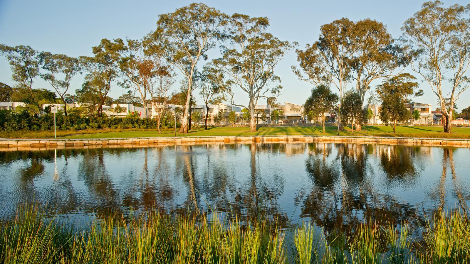 Fairwater Community Park Photo 7
