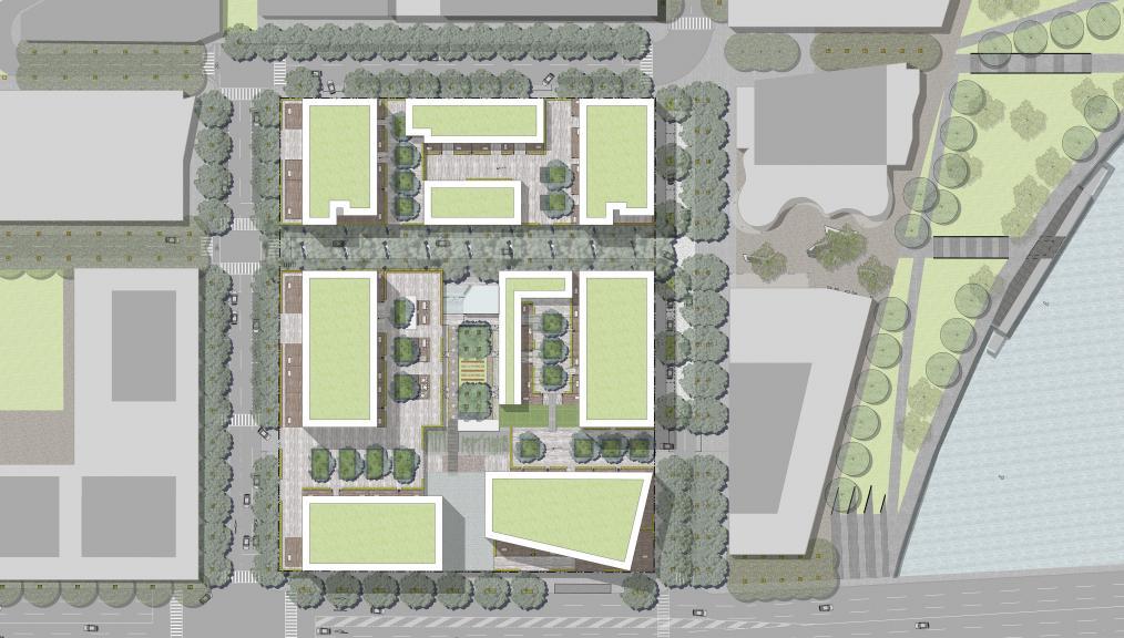 Hopkins Street Masterplan